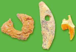 Міра. Просвердлені прикраси з бурштину та зубів лисиці й песця