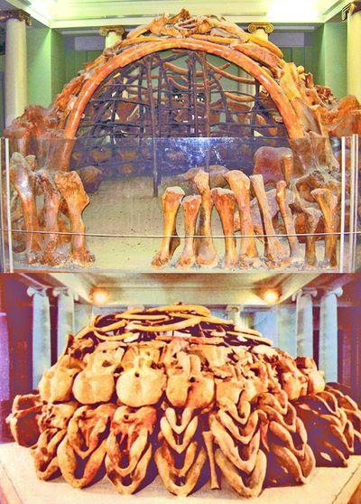 Житло мисливців на мамонтів (Межирічі)