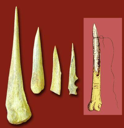 Знаряддя з кістки (голки, проколки, шила)